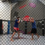UFC FN33 Boxing