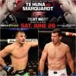 UFC New Zealand Perosh Villante 28th June 2014