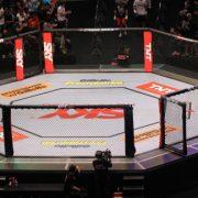 UFC Octogon