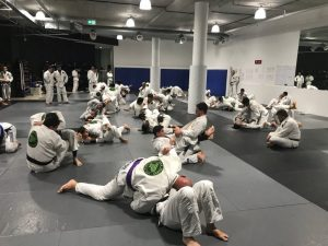Team_Perosh_Grading_BJJ_March_2018_4