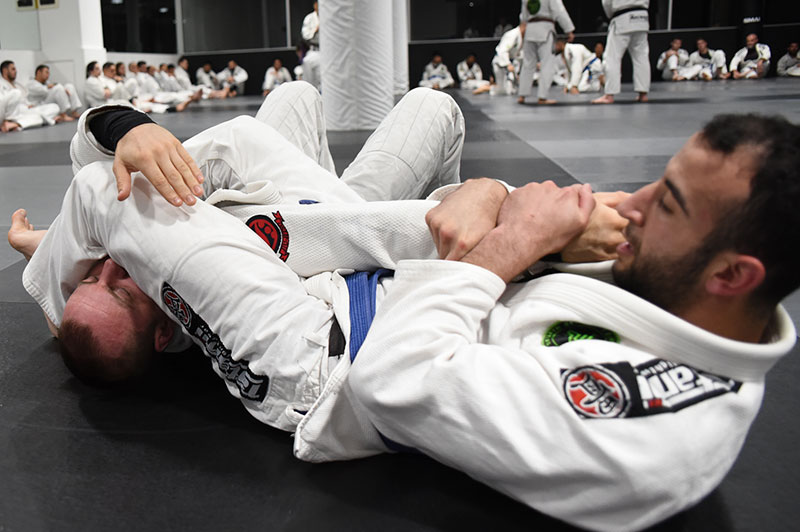 Image result for kickboxing and bjj